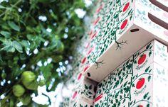 Identity, gadgets and packaging deisgn for the Łęgajny Horticultural Farmmonika / by Monika Ostaszewska-Olszewska