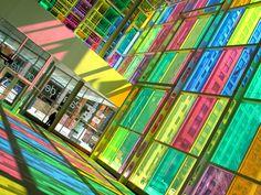Montreal Rainbow