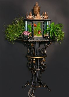 """eatbreathedraw: """" optimistic-velociraptor: """" sixpenceee: """" These are Victorian aquariums from the 1880s. (Source) """" TIME TO REVIVE A TREND """" Oh yes. ^^ what they said??? """" Victorian Furniture, Victorian Decor, Antique Furniture, Retro Furniture, Furniture Stores, Cheap Furniture, Aquarium Original, Victorian Conservatory, Amazing Aquariums"""