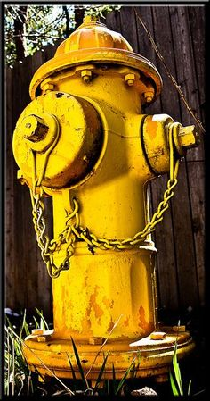 Fire Hydrant  (Yellow)
