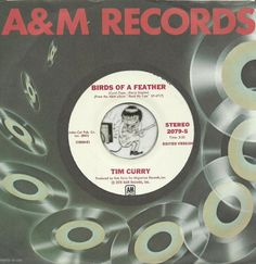 TIM CURRY Birds Of A Feather GROUP GARAGE PSYCH WLP DJ PROMO 45 RPM RECORD NM-