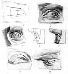 Plaster cast human body fragments drawing: nose, eye