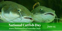 National Catfish Day - June 25