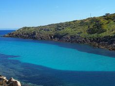 Cala d'Oliva - Asinara    #Sardegna #Sardinia #Italy #Italia #sea #mare #holiday #vacanza #turismo #tourism