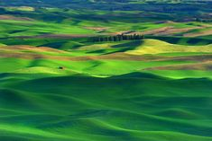 The Bucolic Landscape Of Palouse, Washington State............been