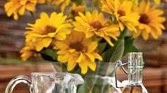 Zázračný domáci sirup na chudnutie: Zázvor a chren pomôžu spáliť brušný tuk! Koľko zhodíte? | Casprezeny.sk