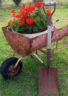 Billie's red and rust from Flea Market Gardening.   How cool is this wheel Barrel?