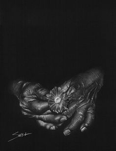 Aged hands and flower still life charcoal drawing by SignedSweet