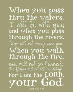 Isaiah 43:23