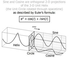 Sine and Cosine are orthogonal projections of the Unit Helix. Physics 101, Physics Formulas, Quantum Physics, Physics Notes, Mathematics Geometry, Physics And Mathematics, Classical Physics, Calculus, Algebra