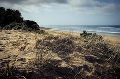 Shifting Perspective (2016).  The dunes of Urquhart Bluff beach provide an ever changing view, they move and evolve. A shifting perspective.  Anglesea, Vic. Australia. Image: © Gary Light. Creative Commons: (CC BY-NC-ND 4.0).  #photography #walking #nature #landscape #victoria #australia #beach #urquhartbluff #dunes #anglesea #greatoceanroad #wandervictoria