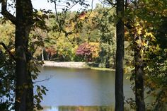 View over Hidden Lake at Hidden Lake Gardens.  Great place for a fall walk!