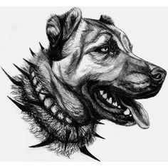 Images about #kışlacı tag on instagram Pencil Art Drawings, Animal Drawings, Kangal Dog, Mavis, Dog Art, Drawing Tips, Dog Breeds, Ottoman, Sketches