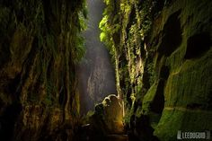 Claustral Canyon, Blue Mountains, New South Wales
