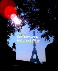 """A vital return to Paris for Cyprus Wines """" Our life is an apprenticeship to the truth, that around every circle another can be drawn; that there is no end in nature, but every end is a beginning; Cyprus, Wines, Discovery, Destinations, Forget, Spaces, Future, Future Tense, Travel Destinations"""