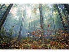 Najpiękniejsze Polskie Krajobrazy