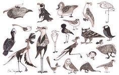 bird character design - Google Search
