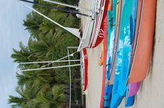 Beach Scene in Fiji