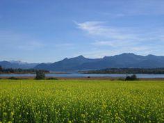 """Ideal gelegen zwischen Prien und Bad Endorf befindet sich der Luftkurort Rimsting auf einem aussichtsreichen Höhenzug über dem Westufer des Chiemsees. Ausgedehnte Wander- und Radwege erschließen die Landschaft mit seinen Naturschönheiten und kulturellen Sehenswürdigkeiten. Zu Rimsting gehört neben der """"Ludwigshöhe"""" der bekannte Bergrücken """"Ratzinger Höhe"""", der bei vielen Malern beliebt ist und von wo man einen fantastischen Blick über das Bayerische Meer mit den Chiemgauer Alpen hat."""