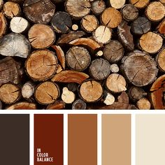 Earthy Color Palette | Warm Colors | Nudes | Woodsy | Neutral Palette