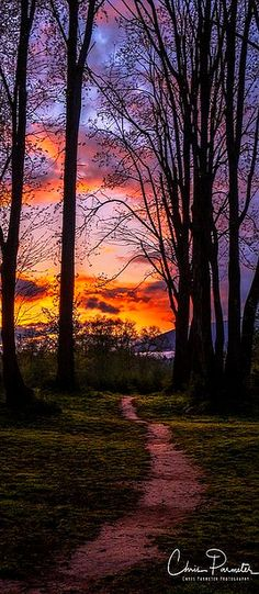 Where will your path lead you? #photo by Chris Parmeter Photography #sky clouds nature landscape sunset sun way path tree amazing