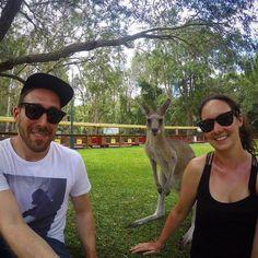 Photobombed #kangaroo #wildlifephotography #goprohero4 #gopro  #currumbinwildlifesanctuary #selfie #photobomb by jmefish http://ift.tt/1X9mXhV