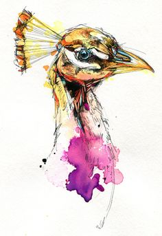 Various Birds & Watercolors of 2013 by Abby Diamond, via Behance