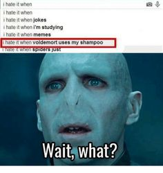 People That Don T Clean Also Support Voldemort Angry Voldemort