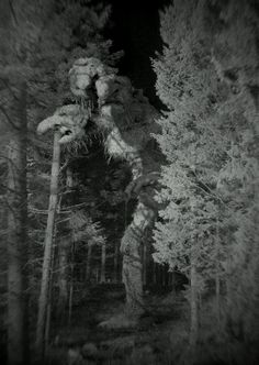 Tosserlad - Norway's Big Foot from troll mythology