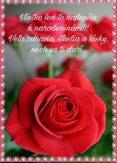 Všetko len to najlepšie k narodeninám!!!  Veľa zdravia, šťastia a lásky,  nech sa ti darí... Tropical Flowers, Beautiful Roses, Beautiful Creatures, Rainbow Colors, My Images, Planting Flowers, Congratulations, Flora, Birthdays