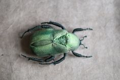 beetle textil art insect Soft sculpturhome decor by mysouldesign