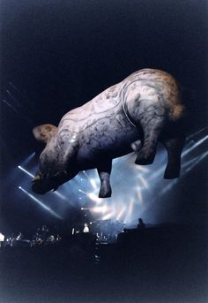 Pink Floyd's Descent Into Madness - Feature - Classic Rock