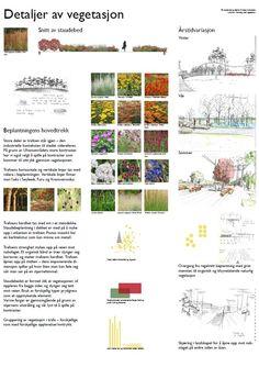 LAA224 Forming med vegetasjon - Ulven 3/4