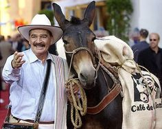 Juan Valdez (and Conchita). As a Colombian (by marriage) I declare him El Dude. Colombian People, Colombian Culture, San Gil, Sierra Nevada Santa Marta, Valdez Is Coming, Famous Colombians, Colombian Coffee, Colombia South America, Coffee Icon