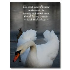 Sold this #swans #beauty natural postcard to NM. Thanks for you who purchased this.