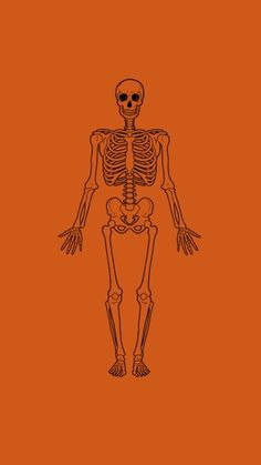Halloween wallpaper skelton, It's Halloween, everyone's entitled to one good scare. Orange Aesthetic, Rainbow Aesthetic, Aesthetic Colors, Aesthetic Images, Aesthetic Backgrounds, Aesthetic Grunge, Aesthetic Wallpapers, Autumn Aesthetic, Diy Halloween Costumes For Kids