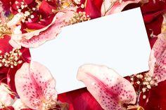 How To Break Into The Erotic Romance Market – 2013 Update   Tracy Cooper-Posey   Erotic Vampire Romance Series & Hot Romantic Suspense