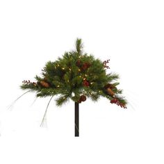 "Vickerman 16"" Mixed Berry and Cone Urn Filler with 100 Clear Lights *** Continue @"