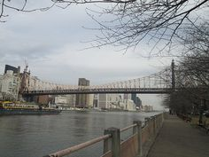 Queensboro Bridge from Roosevelt Island, NYC. Nueva York
