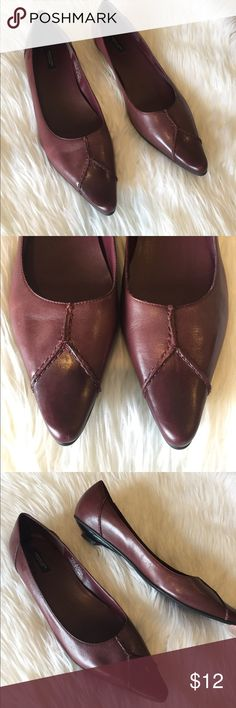 Never Worn Leather Pointed Toe Flat Never Worn American Eagle Outfitters Maroon Leather Pointed Toe Flat with Stitch Detail, made in Brazil American Eagle Outfitters Shoes Flats & Loafers