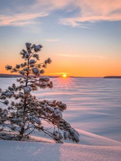 How To Take Landscape Photos Dslr Landscape Photography, Nature Photography, Landscape Photos, Winter Scenery, Winter Sunset, Photos Voyages, Snow Scenes, Winter Photos, Beautiful Sunrise
