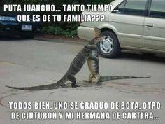 #toquedehumor #chiste