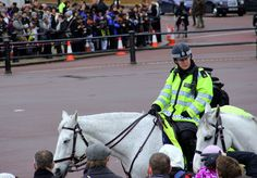 A mounted policewoman on the rounds at Buckingham Palace