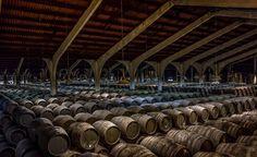 Jerez Sherry Bodegas and wineries - Jerez de la Frontera, Spain #Jerez #Bodegas #Wineries #Spain #Maladeviagem