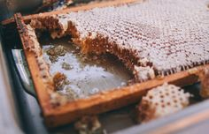 Honeycomb Photo - A well traveled woman
