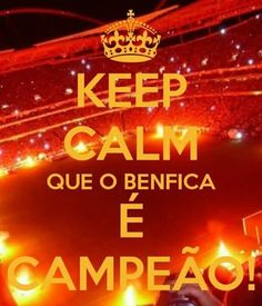 Benfica Wallpaper, We Are The Champions, Portugal, Lego, Football, My Love, Eagle Pictures, Football Memes, Soccer Party