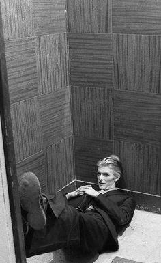 jacony's memo — David Bowie as Thomas Jerome Newton in The Man Who. jacony's memo — David Bowie as Thomas Jerome Newton in The Man Who. Freddie Mercury, David Bowie, Major Tom, Stevie Nicks, Rolling Stones, Funny Videos, The Thin White Duke, Tribute, Ziggy Stardust