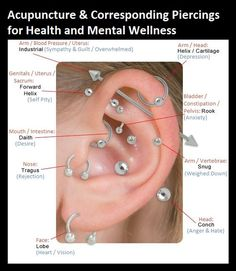 I like the visual of the helix/cartilage ring near to the industrial, particular…, - Belly Button Piercing Ear Piercings Chart, Different Ear Piercings, Ear Peircings, Cute Ear Piercings, Body Piercings, Unique Piercings, Tongue Piercings, Types Of Ear Piercings, Piercing Eyebrow