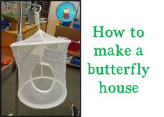 Bright Ideas #4 - How To Make A Butterfly House