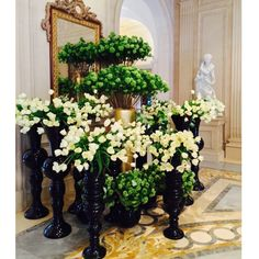 Fleur International assembles the most celebrated and renowned leaders in the floral & event industry to teach master classes to industry pros. Jeff Leatham, Easter Weekend, Four Seasons Hotel, Flower Power, Flower Arrangements, Table Decorations, Flowers, Plants, Wedding
